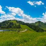 Wiese am Grafenbergsee mit Panoramablick Wagrain